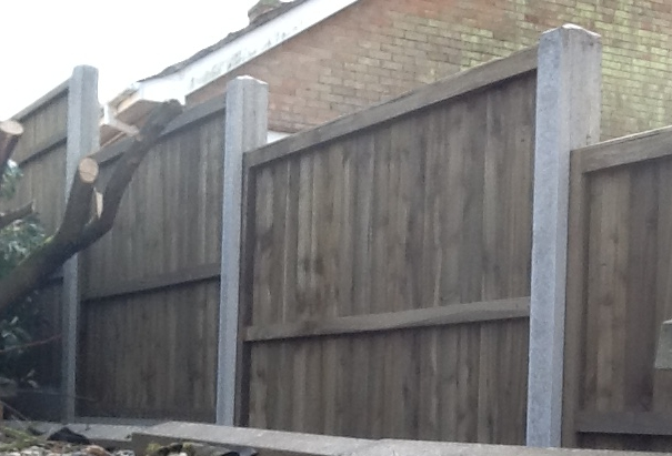 High quality fencing and construction services from Steve Winter Fencing from King's Lynn